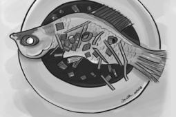 Steamed Fish illustration