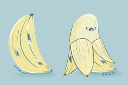 An Illustrated Banana Revealed